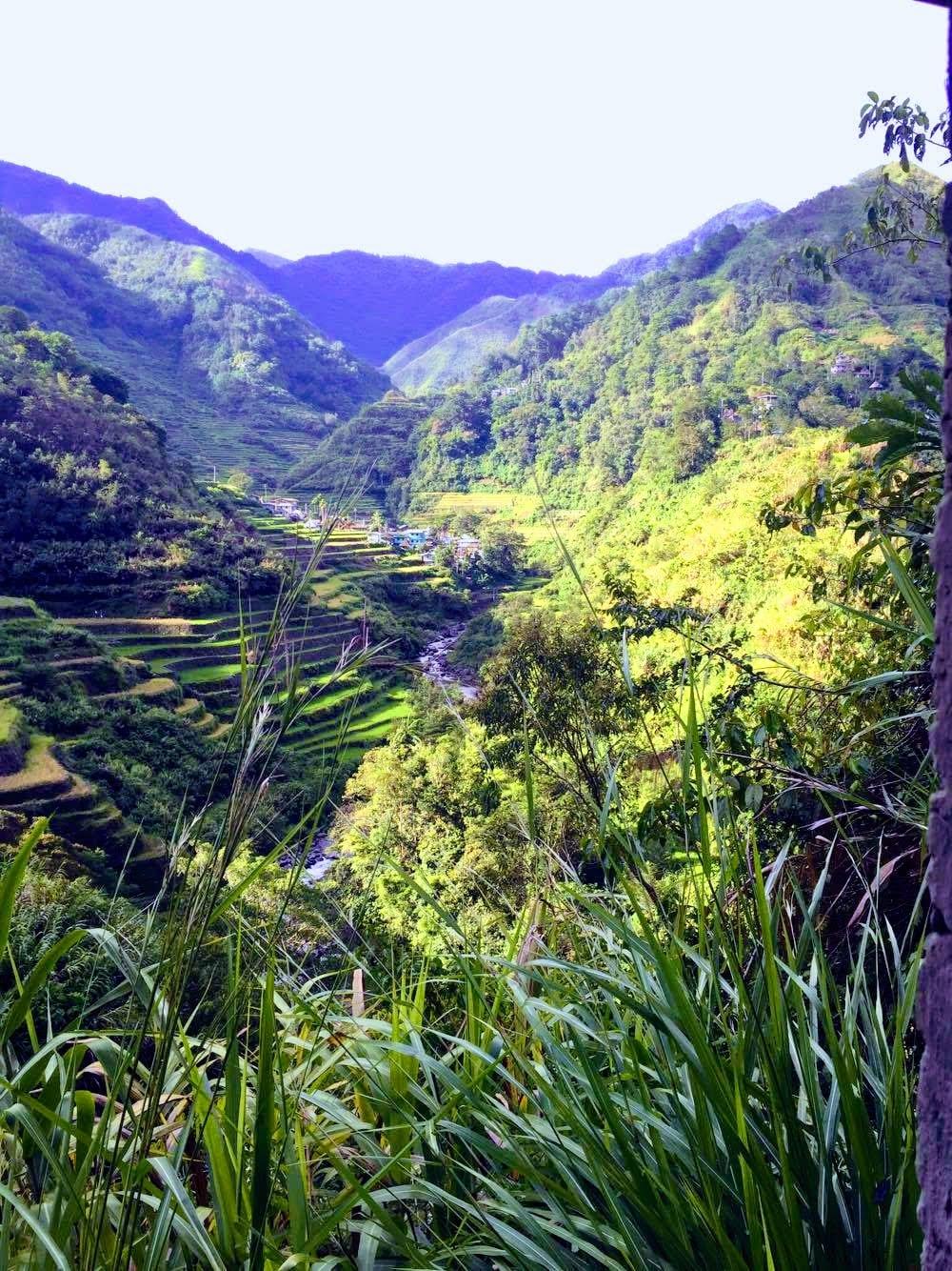 terrazas arroz banaue filipinas